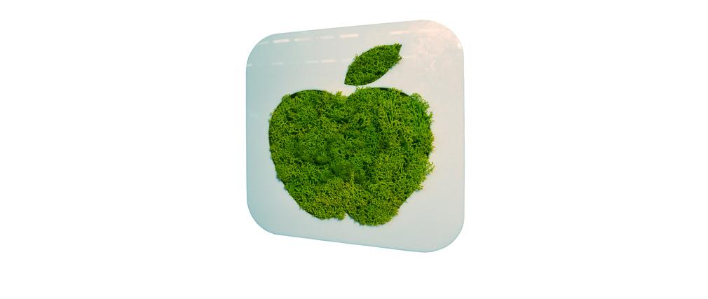 Cadre végétal design MINI SIGNALIS Pomme