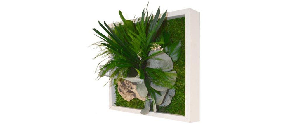 Cadre végétal en bois blanc AMAZONIA