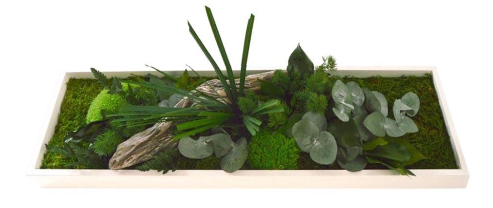 Cadre végétal en bois blanc AMAZONIA Panoramic