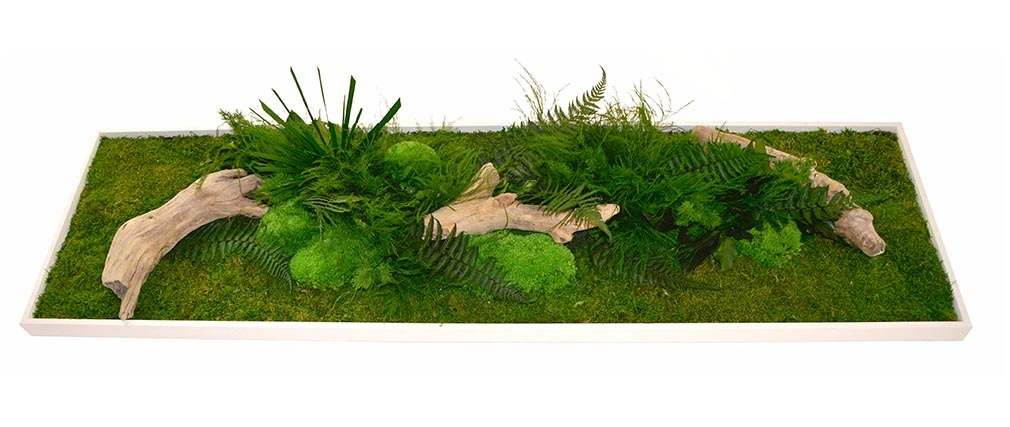 Cadre végétal en bois blanc AMAZONIA Panoramic XL