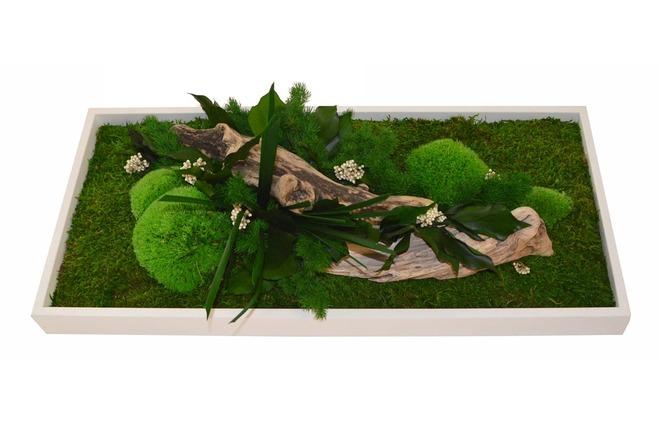 Cadre v g tal en bois blanc amazonia rectangle miliboo for Aquarium cadre