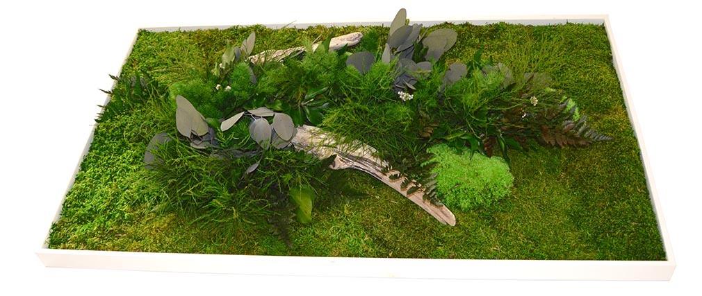 Cadre végétal en bois blanc AMAZONIA Rectangle XL