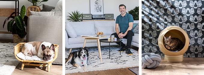 Meubles et accessoire pour chiens et chats