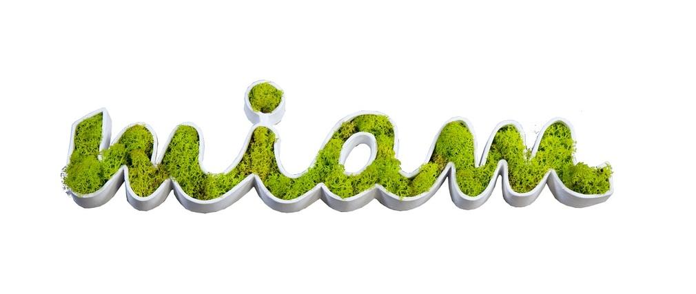 Stickers végétal design SIGNALIS Miam